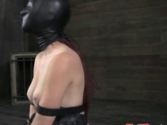 BDSM sub restrained and hooded